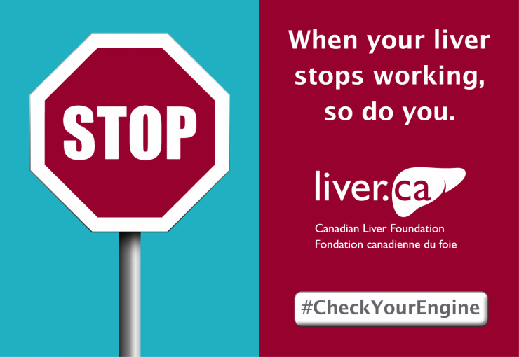 Liver Stops-CLF Display Ad 580x400-2018.png